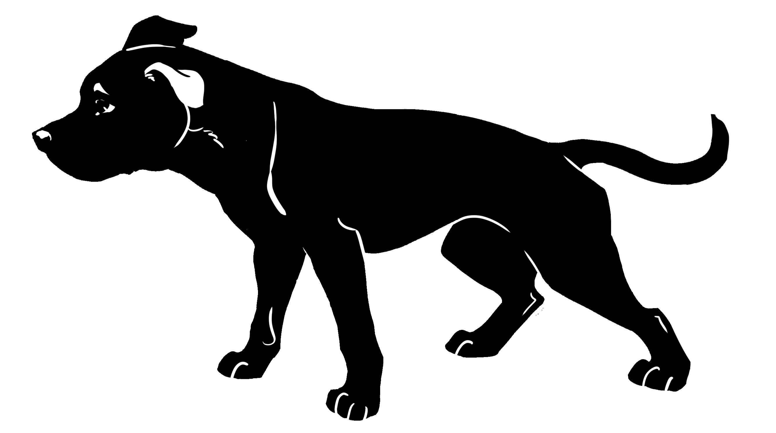 Black Dog Dog Logo